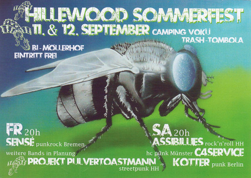 Hillewood Sommerfest 2015 Flyer