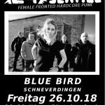 C4Service-Schneverdingen-BlueBird-flyer3